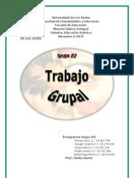 Trabajo Grupal Del Grupo 3. Version 1