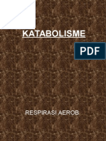 katabolisme-1
