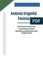Anatomia Urogenital Feminina