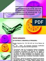 Diapositivas de Formulacion[1]