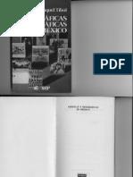 Gráficas y Neográficas en Mexico de Raquel Tibol