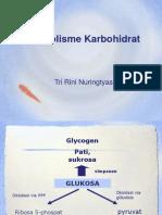 Metabolisme KH (Ok)