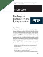 Bankrupty Liquidation and Reor