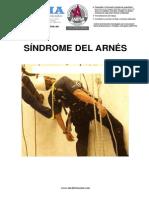 1_SINDROME_DEL_ARNES.pdf