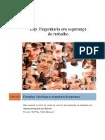 Roteiro de Estudo Psicologia - Engenharia Em Segurança Do Trabalho