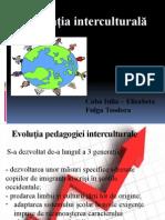 Caba_Fulga.pptx