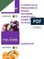 Elisa Macchi - Frutta d Estate 2013