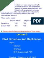 Structura ADN si PCR
