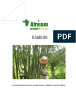 BAMBOO - a rural development and climate change mitigation crop for Malawi.pdf