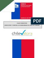 PLAN FORMATIVO DIRECCIÓN Y CONTROL DE MANIOBRAS DE IZAJE DE CARGAS.pdf