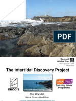Carolyn Waddell 2015 Cornwall Intertidal Survey