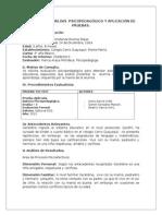 Informe de Analisis Psicopedagogico_2015