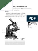 Anexo Guía N° 1  Lab Microscopia Kinesiología-1