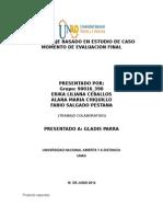 Entrega Del Estudio Del Caso Paso 4-5-6 Evaluacion Final