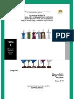 Precedencia Diplomatica- Tema 5.- Grupo Nº 13
