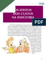 Os Efeitos Custos Industria