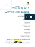 Informe Consolidado Gestion Local Jul-Sept 2009