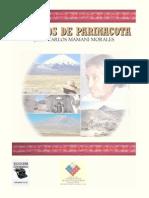 MAMANI Juan Carlos Cuentos de Parinacota