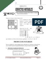 MÓDULO Nº 11 PRODUCTOS NOTABLES.doc