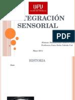 Integración Sensorial