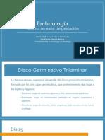 Embriología Semana 3