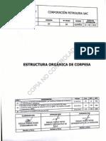 Estructuras Organicas Caratula
