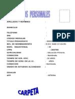 CARP. PEDA 2014 - para compartir.doc