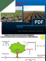 Exposicion_6_Principios de Irrigacion.pptx