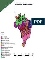 Distribuição Da Vegetação No Brasil