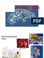 micororganismos-140608132127-phpapp02