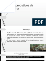 Ciclos Produtivos Da Borracha- Seminário de Economia
