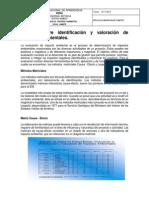 ELABORACION MATRIZ LEOPOLD.pdf