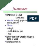 1. Te Bao Eukaryote