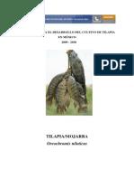 Propuesta Para Desarrollo Del Cultivo de Tilapia en Mexico