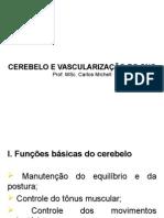 CEREBELO E VASCULARIZACAO DO SNC.ppt