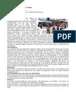 DANZA CANASTEROS DE URPAY.docx