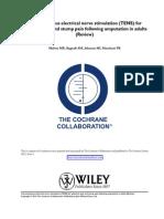 TENS - INGLES.pdf