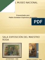 Visita Al Museo Nacional