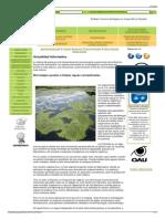 Actualidad Informativa - RDS COLOMBIA