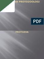 Protozoologi