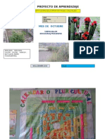 PROYECTO DE OCTUBRE 2014 TERCER CICCLO.docx