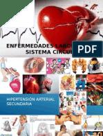 Presentación Enfermedades Sist. Circulatorio y Vista