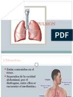 PULMON e IG