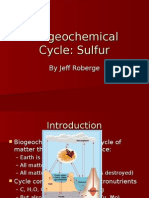 APES Sulfur Biogeochemical Cycle