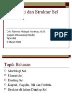 Morfologi Dan Struktur Sel Bakteri
