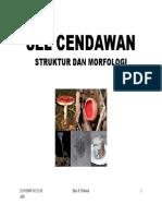 STRUKTUR DAN MORFOLOGI SEL CENDAWAN.pdf