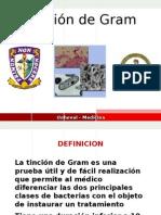 Tincion GRAM