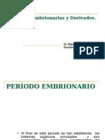 Capas Embrionarias y Derivados