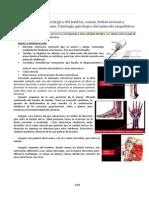 Tema 1. Patología quirúrgica del tendón, vainas, bolsas serosas y correderas osteofibrosas. Patología quirúrgica del músculo esquelético.