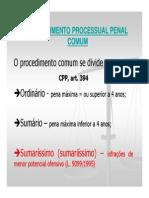 Procedimento Sumaríssimo (1)